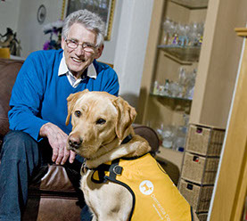 Dementia Assistance Dog Appeal